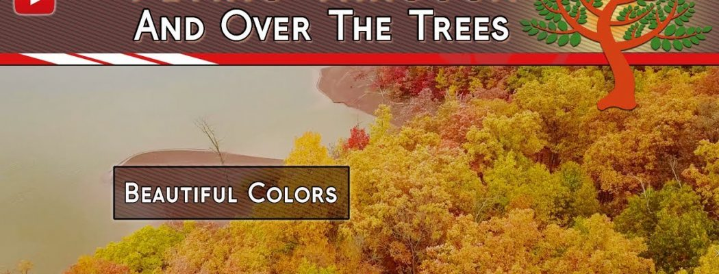 Just A Bit Of Fall Color – Our Scenic Life